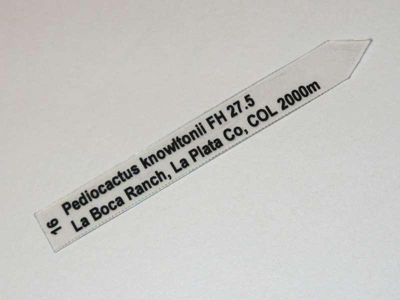 P1020657.JPG